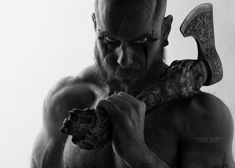 викинг викинги берсерк Флокиphoto preview