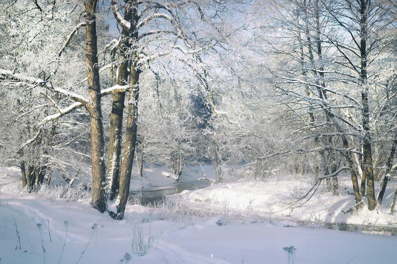 Зима на исходеphoto preview