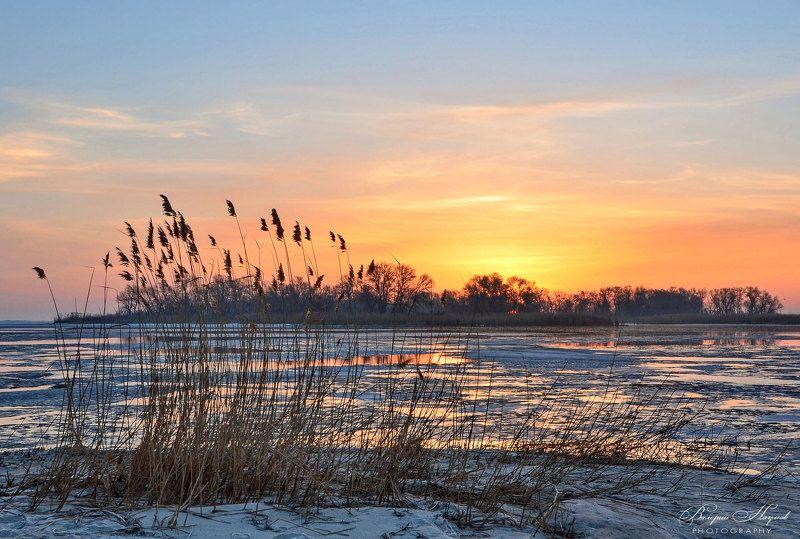 март, утро, рассвет, восход, камыши. острова, днепровские плавни, ледоход Мартовский восход. Плавни фото превью