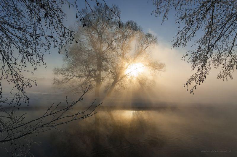 природа, река, пейзаж, зима, утро, туман, рассвет В рассветных лучахphoto preview