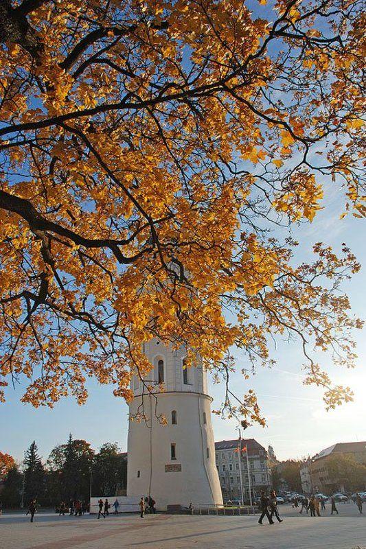 Золото Вильнюса (1)photo preview