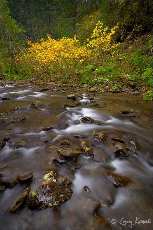 Осень на ручье Ястребокphoto preview