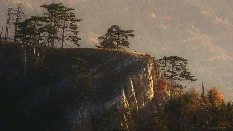 крым, ялта, иограф, никитская яйла, утро, рассвет, олень, горы, crimea, mountain, deer, dawn, sunrise. История благородного оленяphoto preview