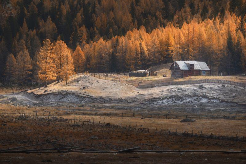 алтай, осень, горы, долина Что за домик вдалеке...photo preview