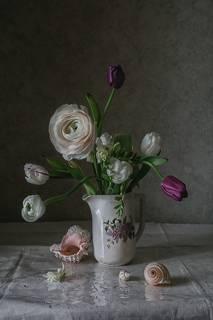 Тюльпаны, лютик и ракушки