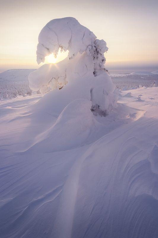 закат, главный уральский хребет, гух, зима, урал, северный урал Заигрывая с солнцемphoto preview