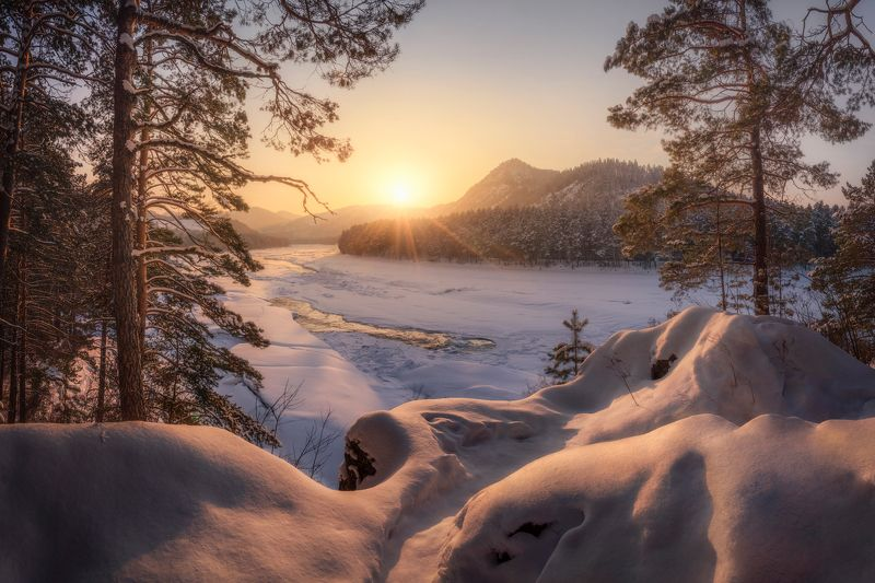 алтай, горный алтай, манжерок, майминский район, катунь, нижняя катунь, скованная льдом, снежный пейзаж, зимний закат, февраль, зима, горы, сосны, сугробы, золотой час Золотые сугробыphoto preview