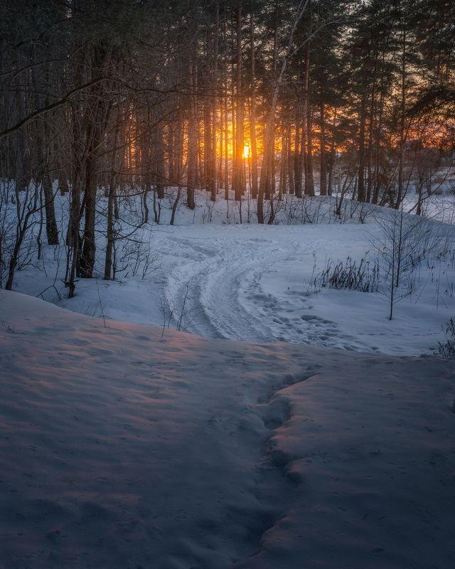 закат, природа, пейзаж, Россия, Московская область На закатphoto preview