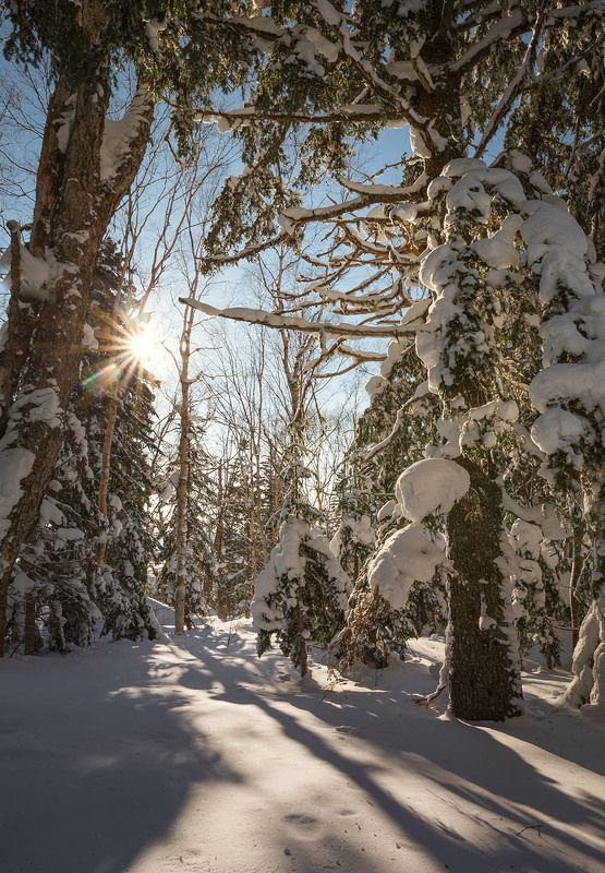 Зима на Сахалинеphoto preview