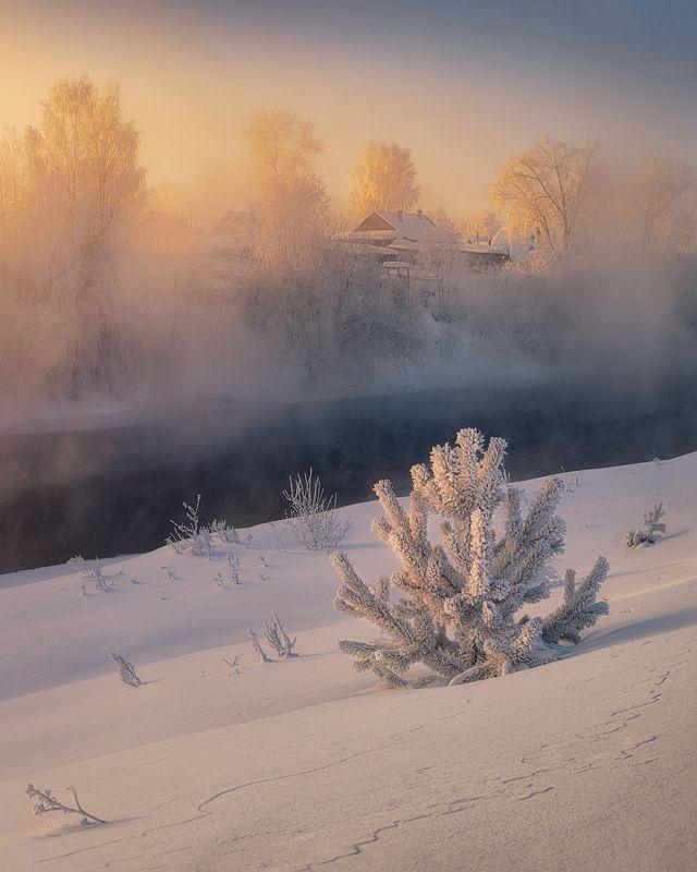 туман, рассвет, зима, холод Когда наступает светphoto preview