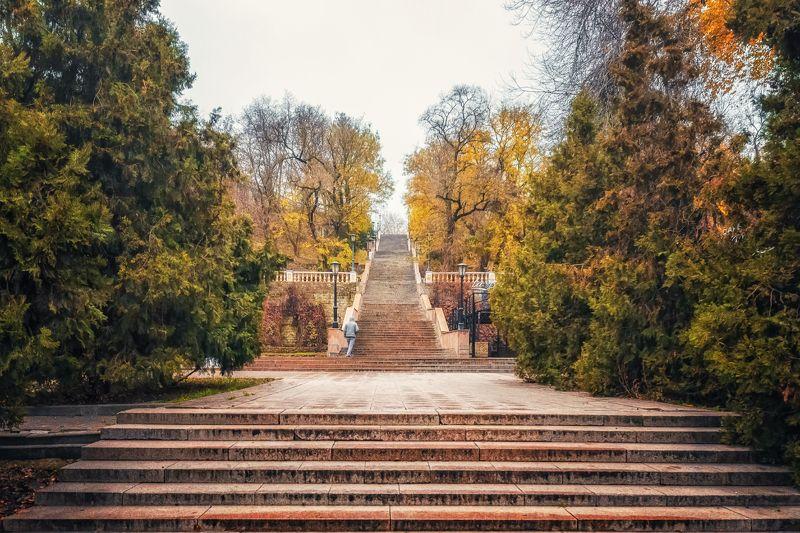 лестница, каменная лестница, архитектура, пейзаж, таганрог Каменная лестницаphoto preview