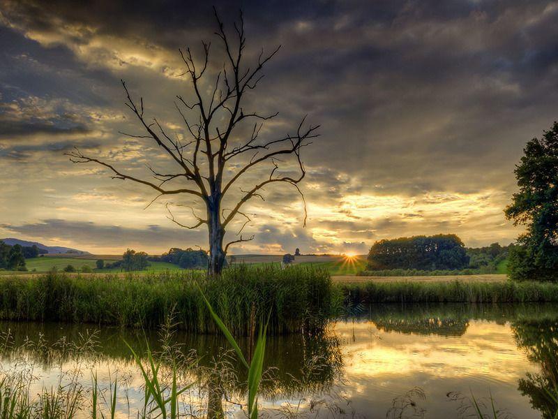 Вечер на озере.photo preview