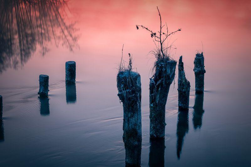 сваи, шатура, озеро, вода, утро, туман, рассвет, мороз, холод Вечныеphoto preview