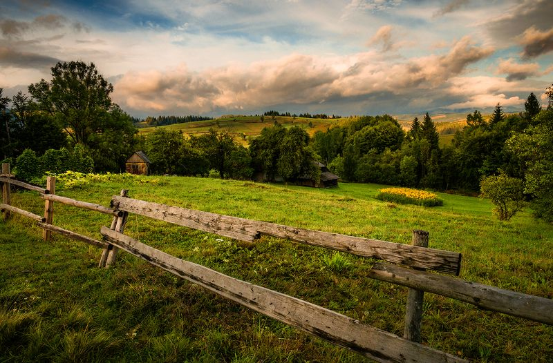 украина, карпаты, горы, осень, вечер, облака, трава, Карпаты вечерниеphoto preview