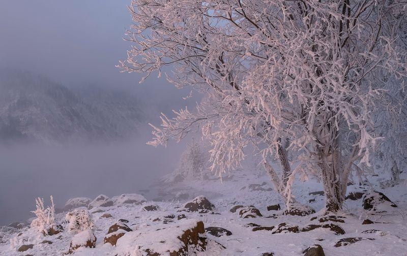 зима, мороз, вечер, закат, Розовый закат.photo preview