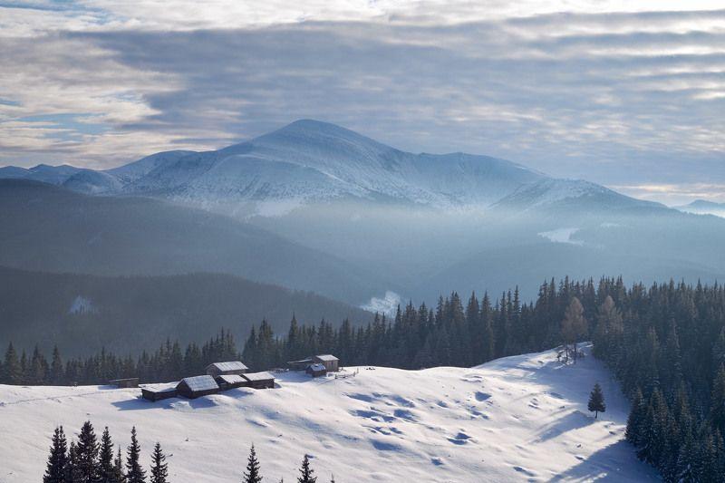 #nature, #туман, #лес, #oсень, #украина, #карпаты, #пейзаж, #закат, #туман, #солнце, #свет, #mountain range, #mountains, #туризм, #лес, #nature, #природа, полонина Григорівка вид на Говерлуphoto preview