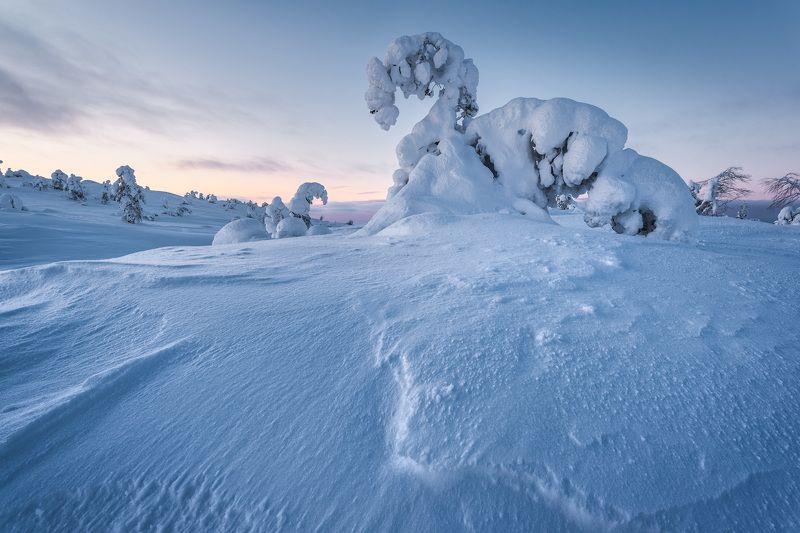 кандалакша, скульптуры, снег, зимний пейзаж Скульптуры заполярных вершинphoto preview