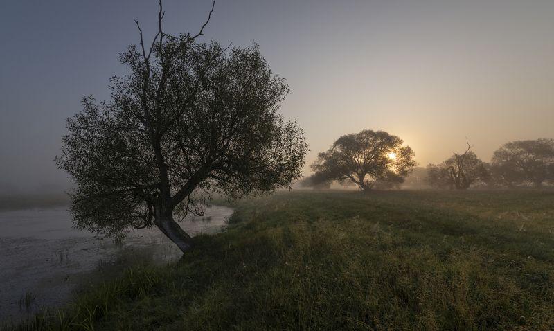 в рассветных туманах...photo preview