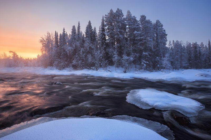 2021, россия, кольский, мурманская область, заполярье, колвица, зима, февраль, пейзаж, снег, деревья, лес, утро, мороз, река, туман, лёд, изморозь, рассвет, небо Тёплый рассвет морозным утромphoto preview