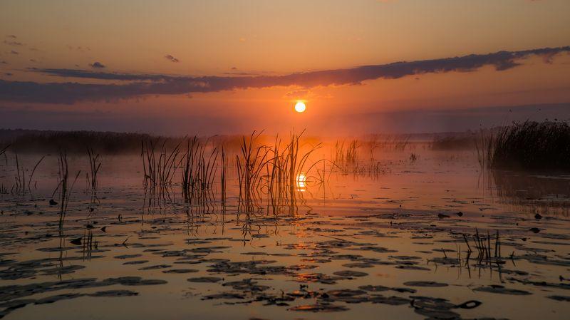 пейзаж, закат, лето, озеро, вода, отражение, небо, облака, красота, природа Знойный рассвет...photo preview