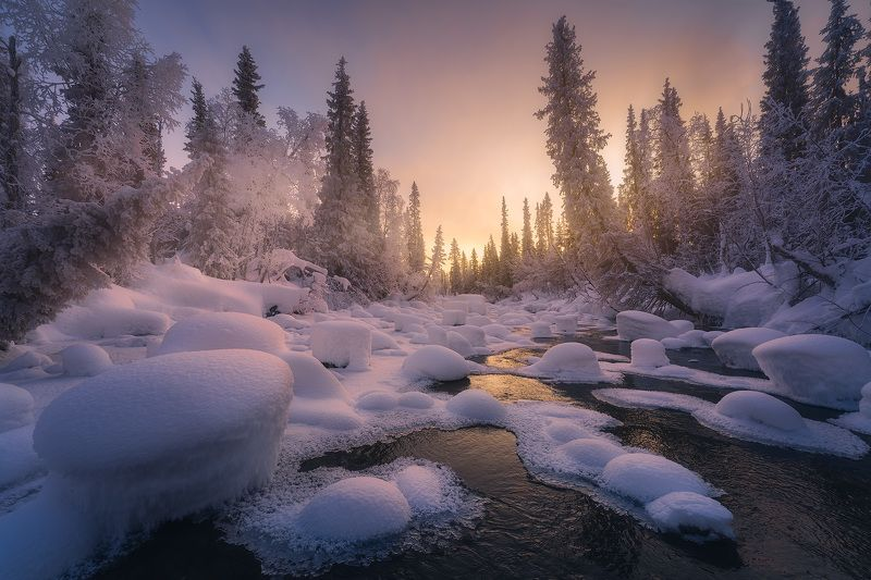пейзаж, север, кольский, лес, зима, река Endless winterphoto preview