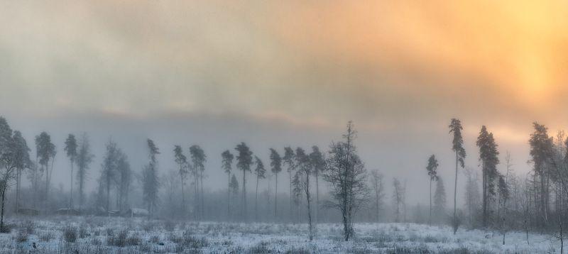 зима, снег, лес, рассвет Зимаphoto preview