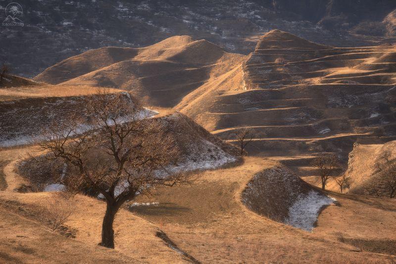 дагестан, террасы Ожидание весныphoto preview