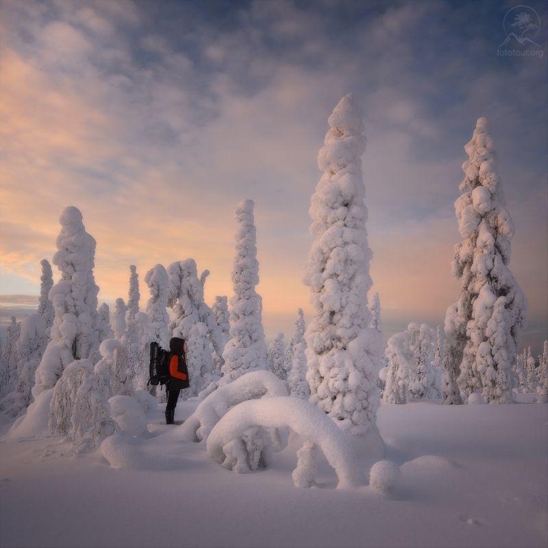 паанаярви, зима Прогулки по зимеphoto preview