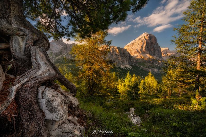 mountains, dolomites, travel, alps Forest in Dolomitesphoto preview