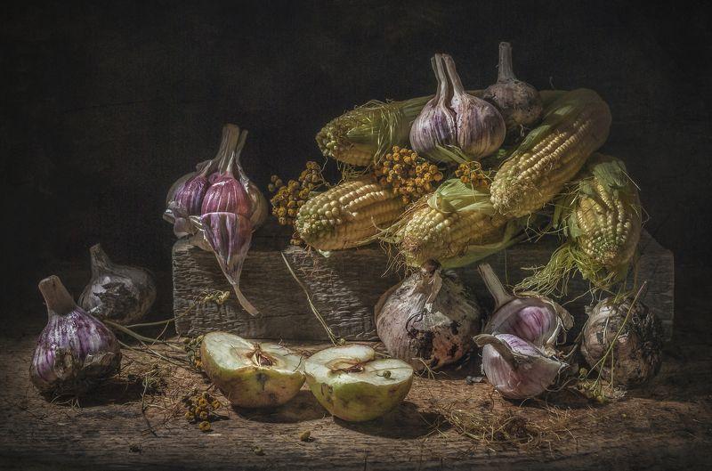 кукуруза,яблоки,фактурные,старый,деревенский,овощи,фрукты,чеснок Плоды Августа 2photo preview