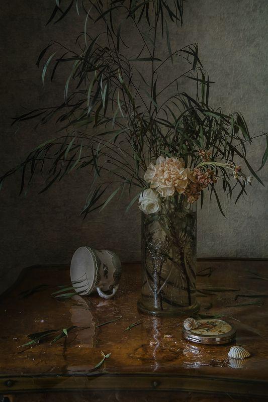 натюрморт, стекло, фарфор, цветы, ракушки Про чашку и цветыphoto preview
