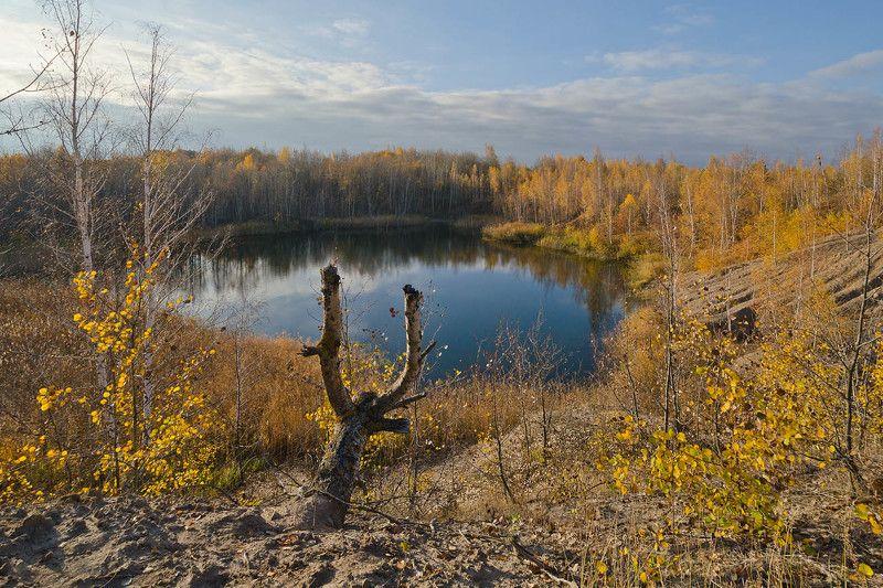 осень, кондуки Осенний пейзаж. Кондукиphoto preview