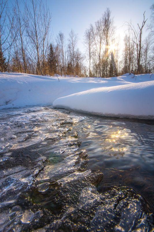 ручей солнце снег весна  Граница зимы и весныphoto preview