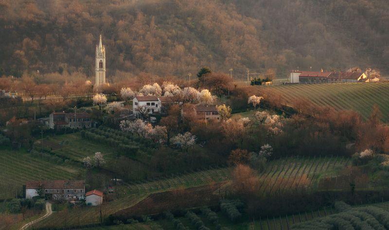 italy,цветение,italia,вечер,италия,veneto,весна,венето,belvedere,деревня, В деревне весна...photo preview