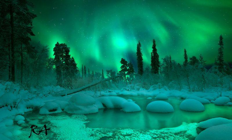 кольский полуостров, кольский, зима, winter, snow, kola peninsula, forest Welcome to fairytalephoto preview