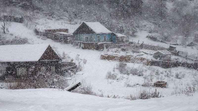 красноярск, кордон, зима, снегопад Сильный снегопад на кордоне.photo preview