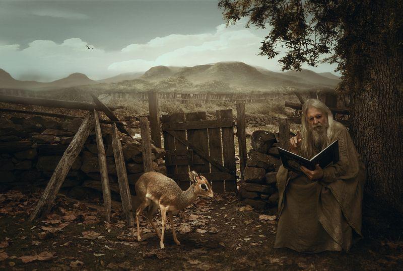 старик, книга, олененок *****photo preview