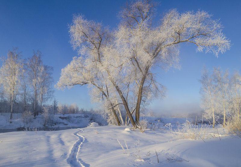 зима, утро, истра Зимний вид на Истреphoto preview