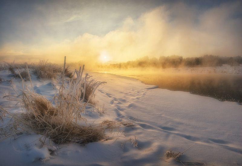 Утро у парящей реки IIphoto preview