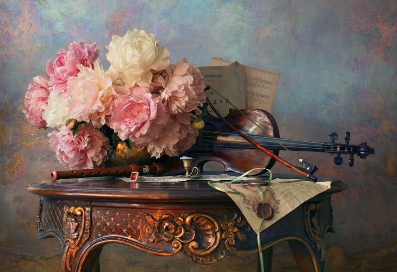 скрипка, музыка, цветы, пионы Натюрморт со скрипкой и пионами photo preview