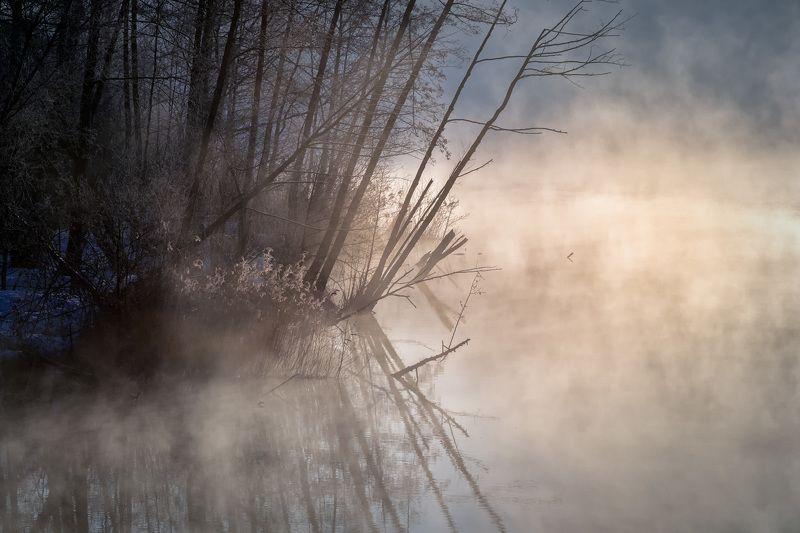шатура, утро, деревья, пар, туман, рассвет, вода, мороз, холод Туманноphoto preview