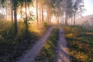 Утро нового дня