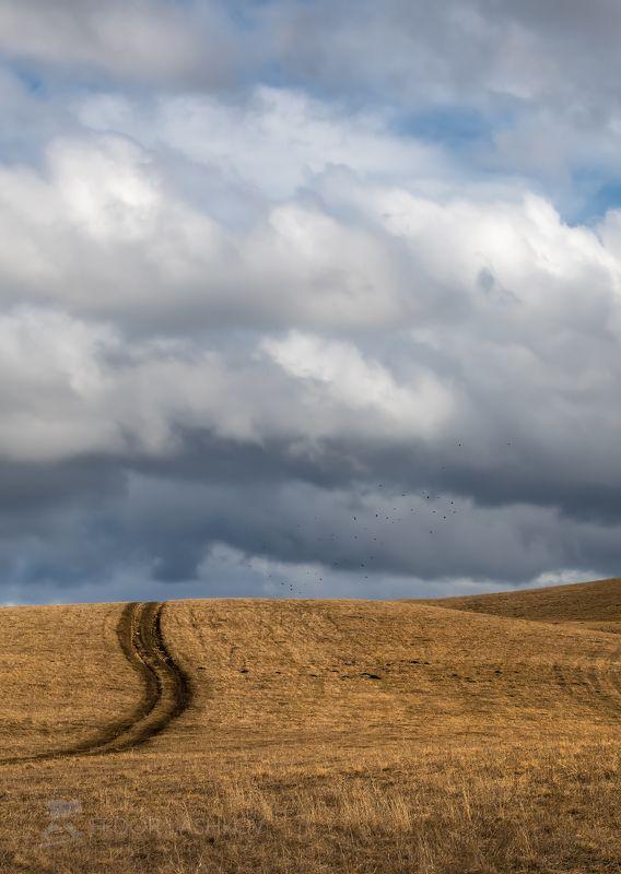 ставропольский край, ставрополье, холм, поле, поля, холмистый, облака, кучевые, облачность, тучи, белый, атмосфера, весна, облачно, степь, степное, Облачные пейзажиphoto preview