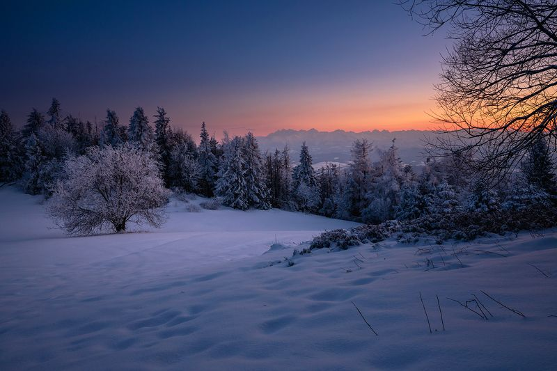 mountains, winter, poland, sunset, bluehour Evening in the Mountainsphoto preview
