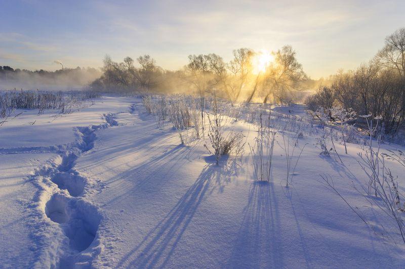 туман, московская область, утро, природа, пейзаж, зима, мороз, солнце Последние зимние морозные дниphoto preview