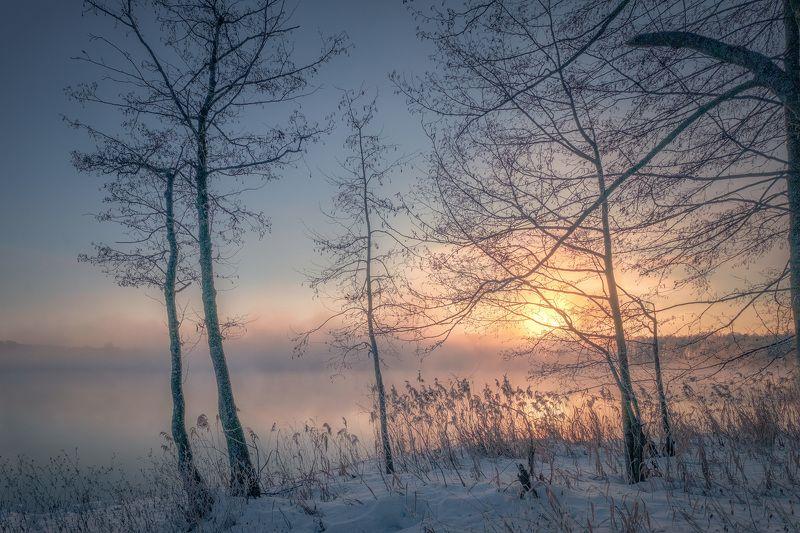 шатура, утро, пар, туман, деревья, солнце, рассвет, вода, трава, мороз, холод Морозный парphoto preview