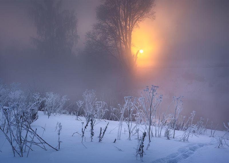 Сквозь туман.photo preview