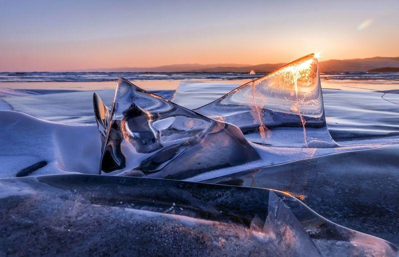 Байкальские акулы на рассветеphoto preview