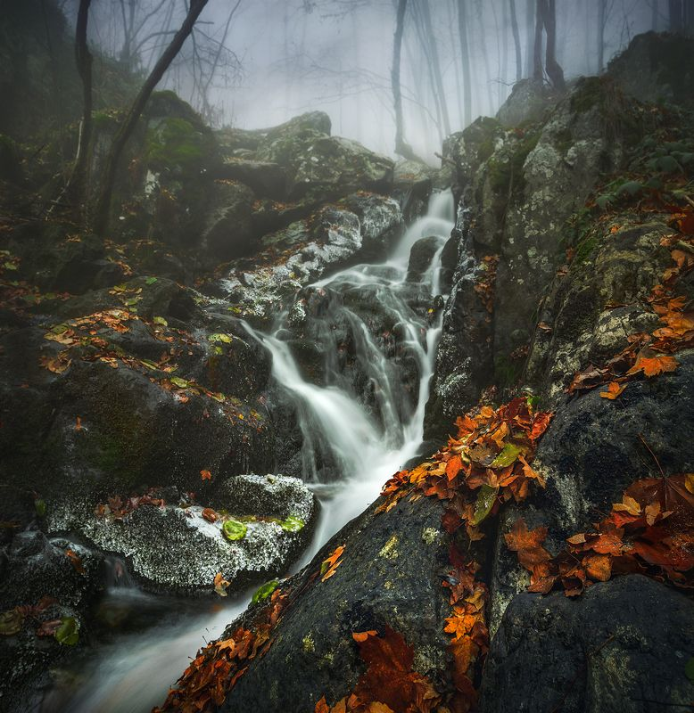 landscape nature scenery forest wood autumn mist misty fog foggy river waterfall colors mountain vitosha bulgaria туман лес From the circlephoto preview