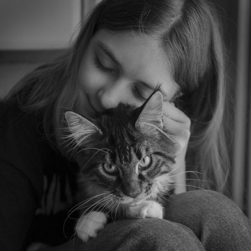 Кот и Викаphoto preview